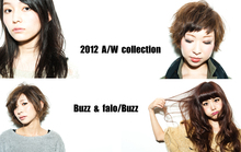 2012-2013  Autumn/Winter collection